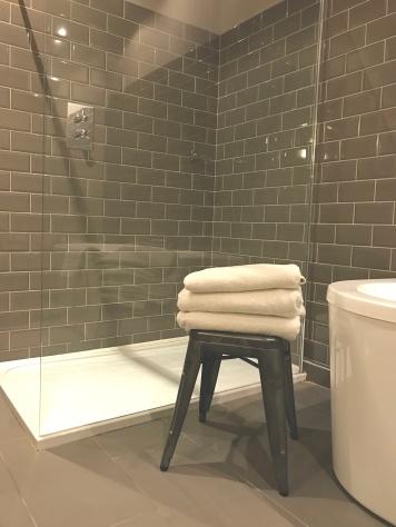 bathroomtitanic